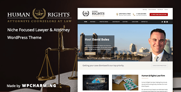 01 preview1.  large preview - HumanRights - Lawyer and Attorney WordPress Theme