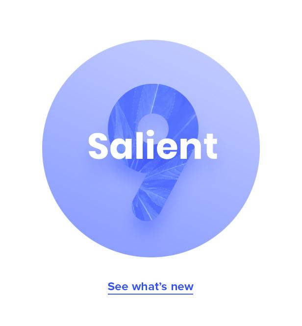 Salient-Responsive Multi-PurposeTheme скачать