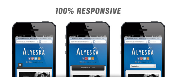 alyeska3 - Alyeska Responsive WordPress Theme