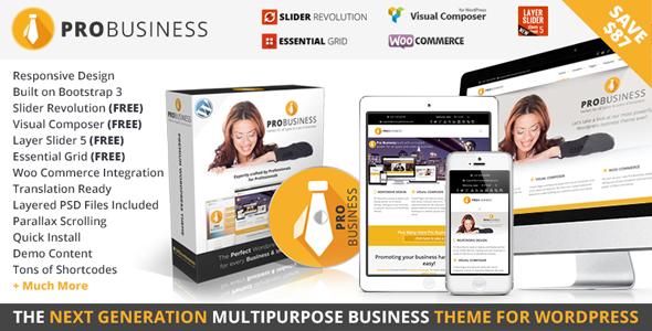 business - PRO Business - Responsive Multi-Purpose Theme