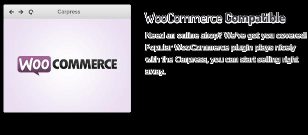 carpress6 - CarPress - WordPress Theme For Mechanic Workshops