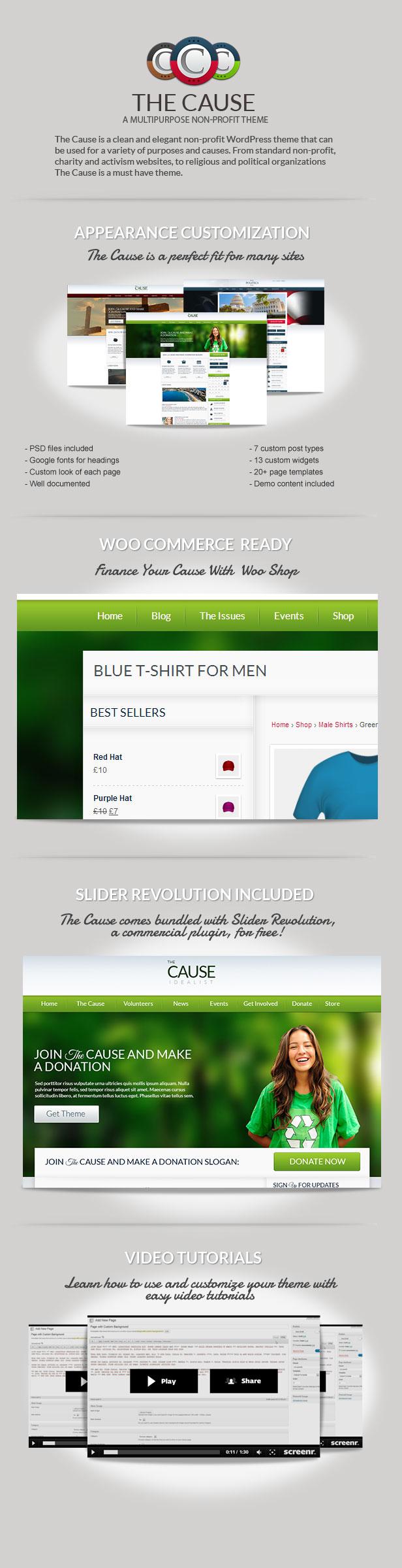 cause2 - The Cause - Non-Profit WordPress Theme