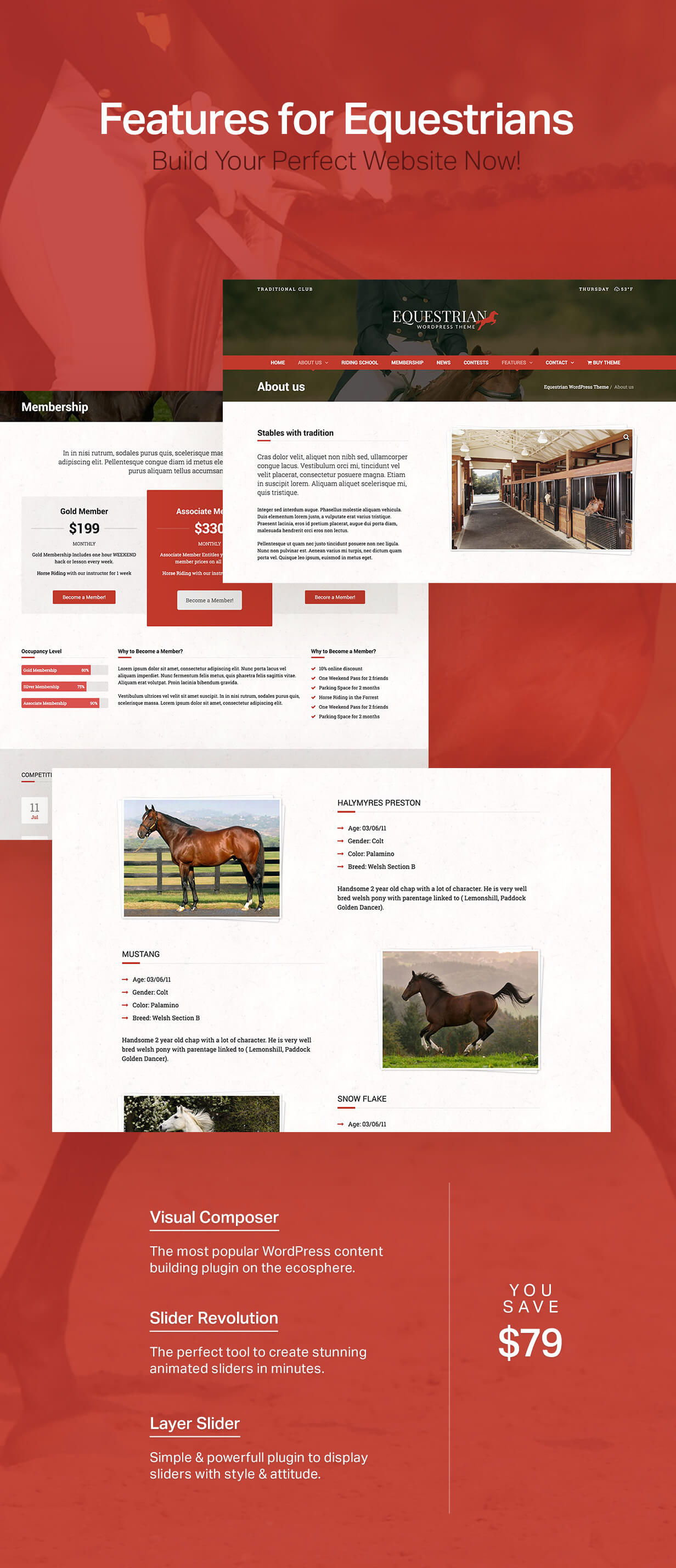 equestrian4 - Equestrian - Horses and Stables WordPress Theme