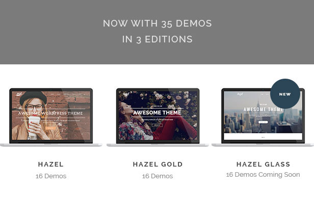 hazel2 - Hazel - Multi-Concept Creative WordPress Theme