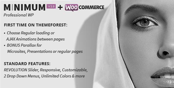 minimum - MINIMUM - Professional WordPress Theme