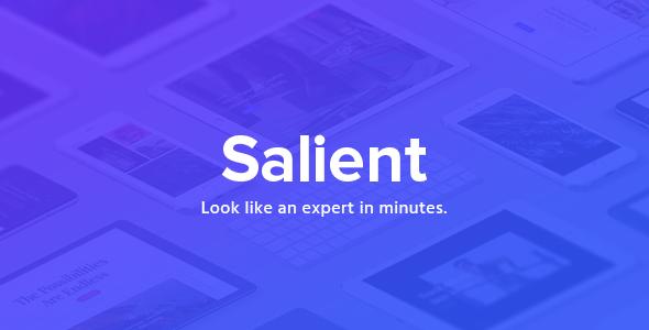salient - Salient - Responsive Multi-Purpose Theme
