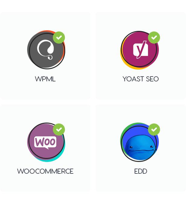 seosight6 - Seosight - SEO, Digital Marketing Agency WP Theme with Shop