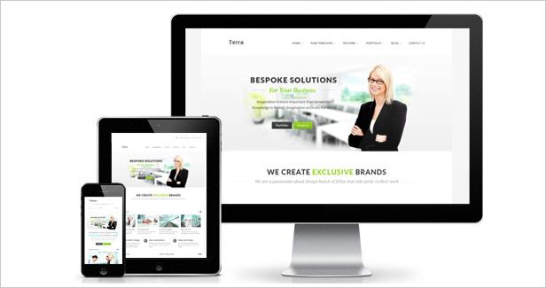 terra2 - Terra - Responsive Multi-Purpose WordPress Templete