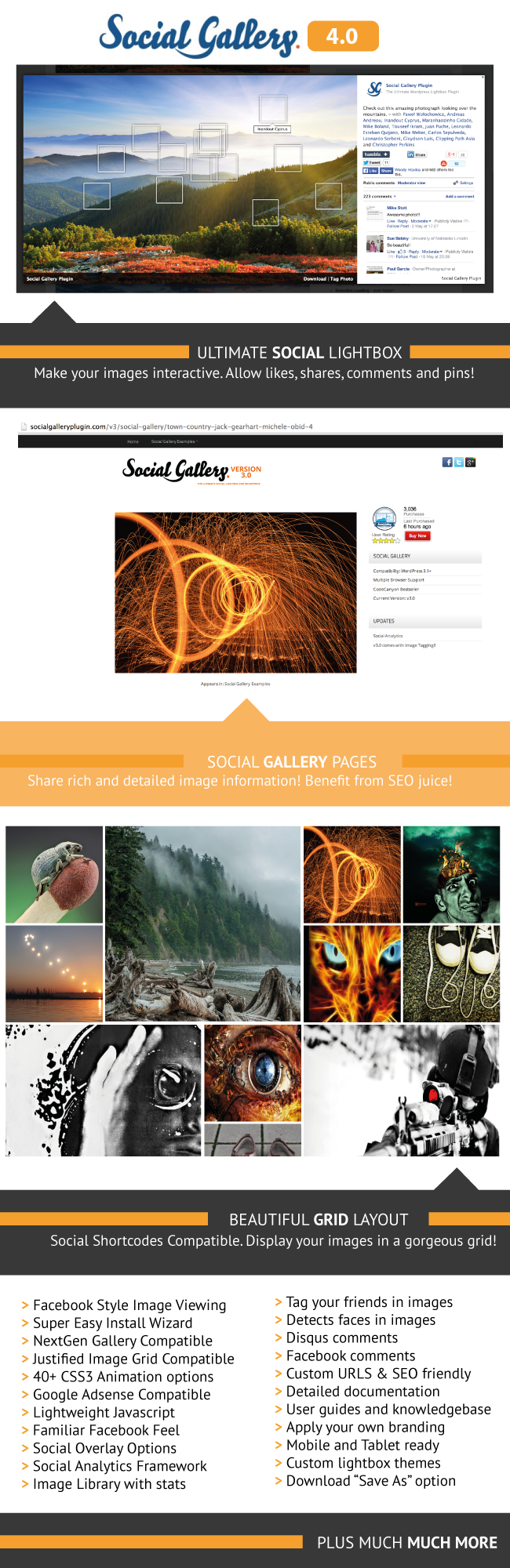 social2 1 - Social Gallery WordPress Photo Viewer Plugin