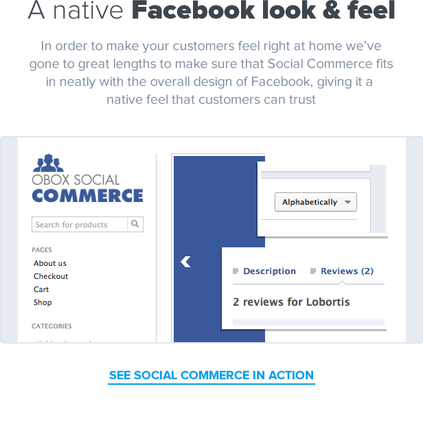 social4 1 - Social Commerce - WooCommerce Facebook Tab