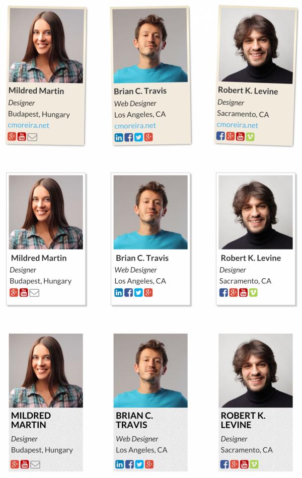 team6 - Team Showcase - Wordpress Plugin