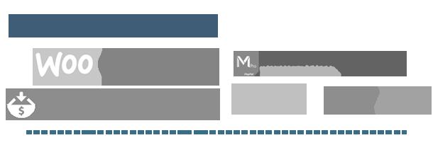 ultimate3 - Ultimate Affiliate Pro WordPress Plugin
