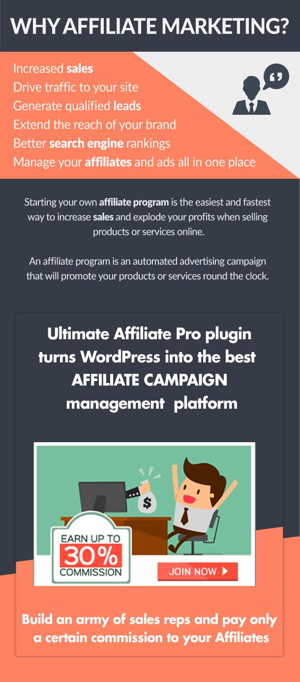 ultimate4 - Ultimate Affiliate Pro WordPress Plugin
