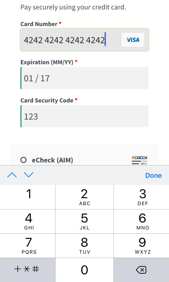 Форма мобильной кредитной карты