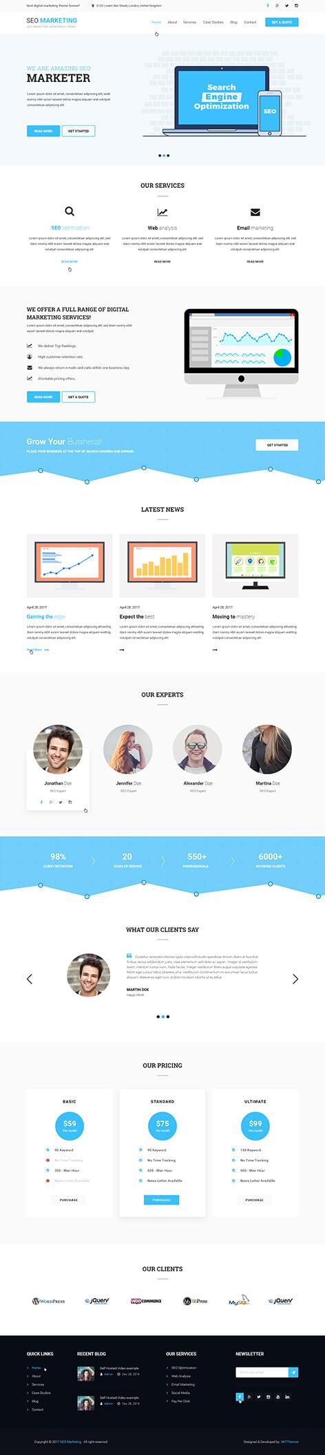seo marketing wordpress theme1 - SEO-Marketing