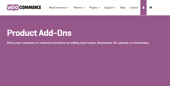 3 3 - Product Add-Ons