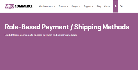 6 6 - Role-Based Payment / Shipping Methods