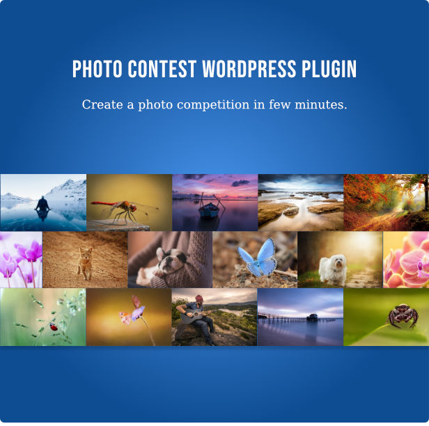 Photo Contest2 - Photo Contest WordPress Plugin